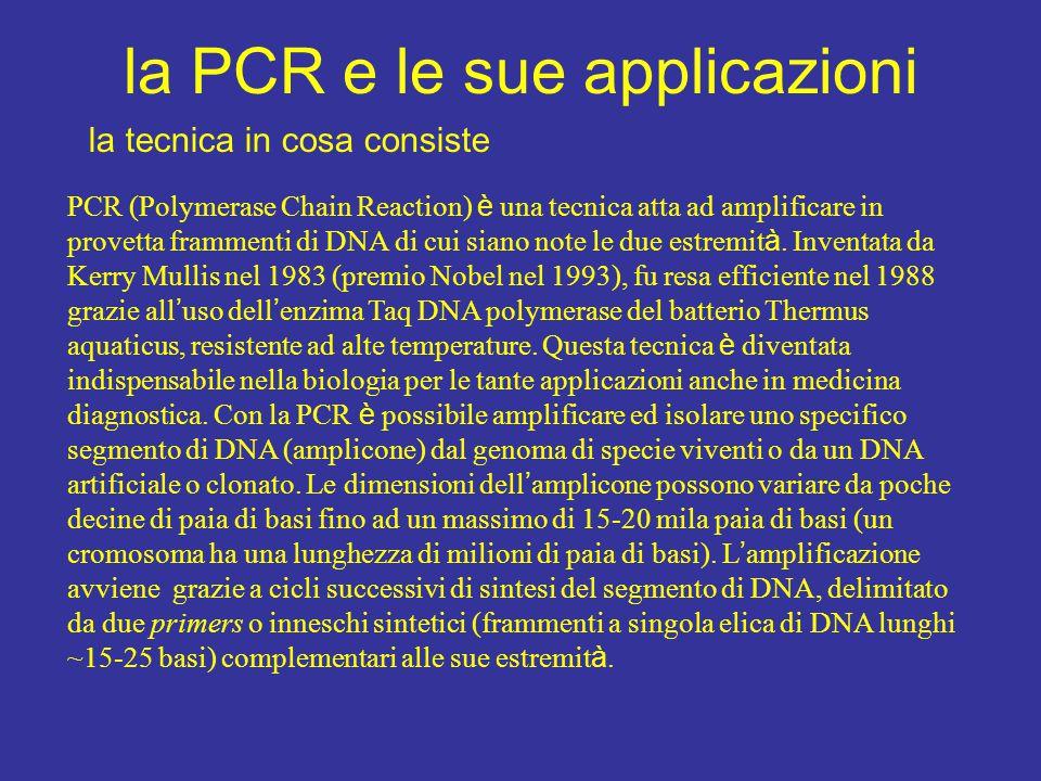la PCR e le sue applicazioni
