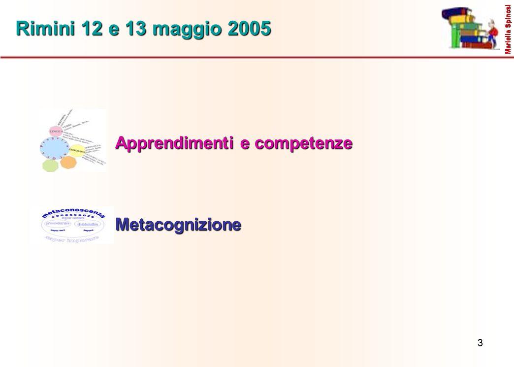 Rimini 12 e 13 maggio 2005 Apprendimenti e competenze Metacognizione