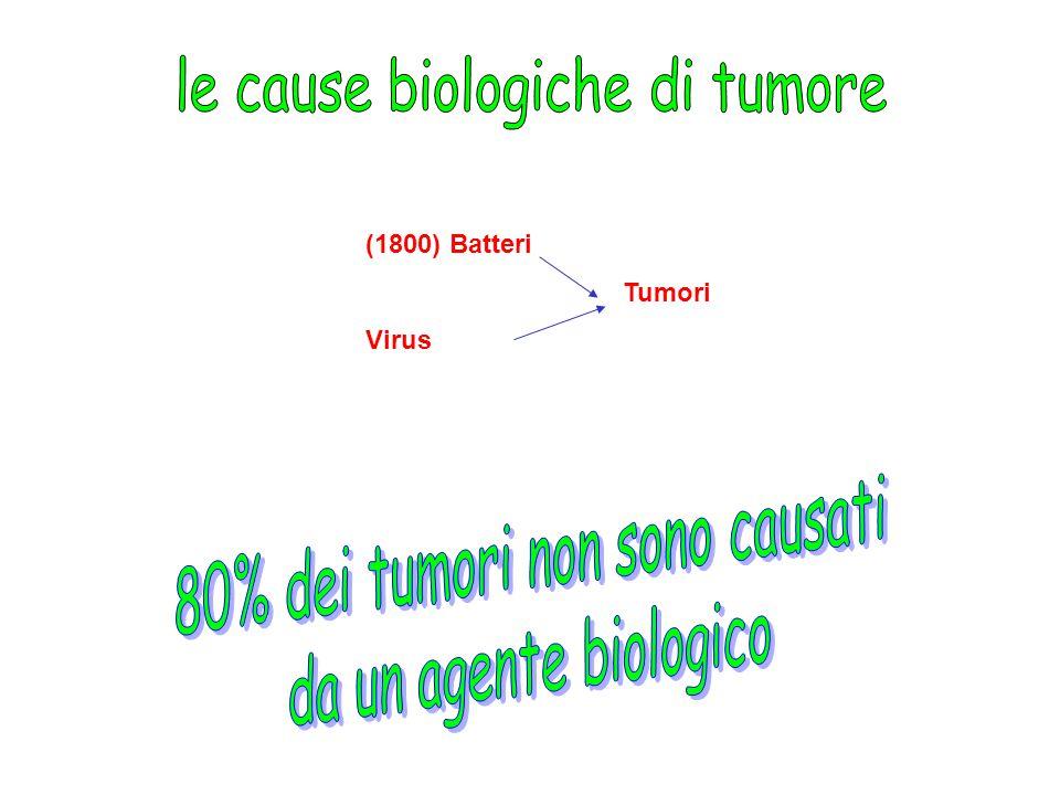 le cause biologiche di tumore