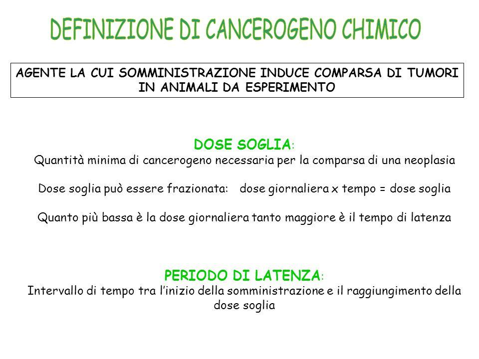 DEFINIZIONE DI CANCEROGENO CHIMICO