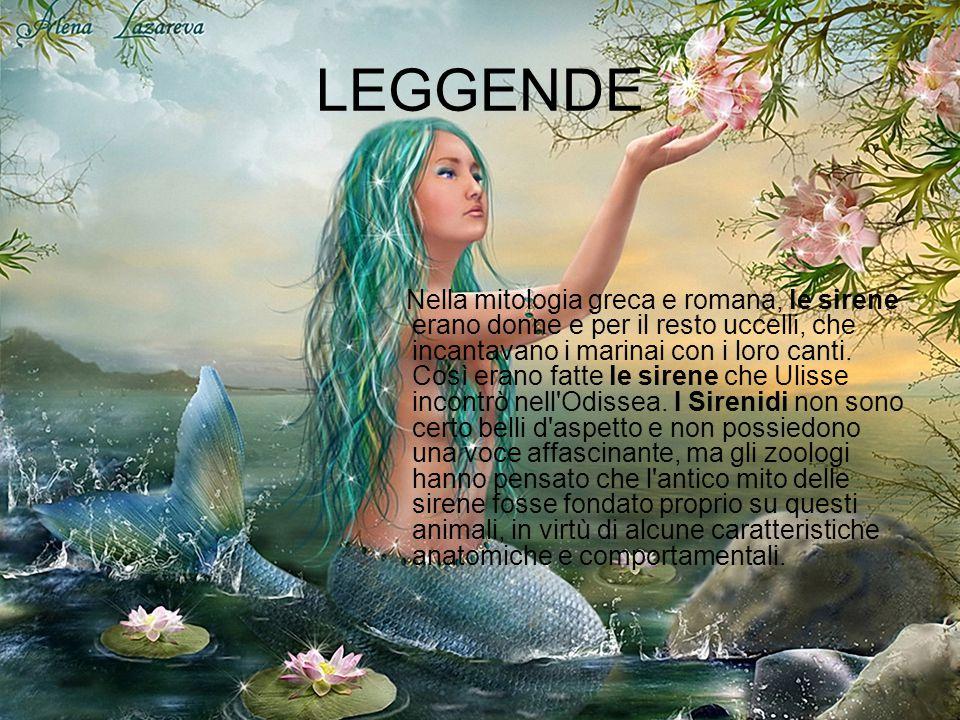 LEGGENDE