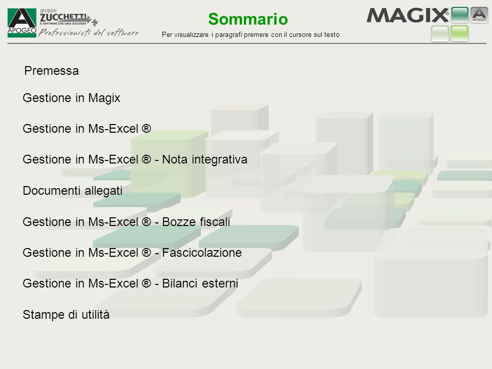 Sommario Premessa Gestione in Magix Gestione in Ms-Excel ®