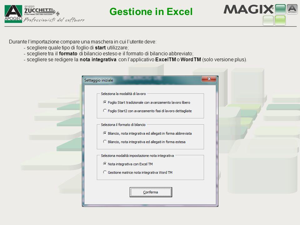 Gestione in Excel Durante l'importazione compare una maschera in cui l'utente deve: - scegliere quale tipo di foglio di start utilizzare;
