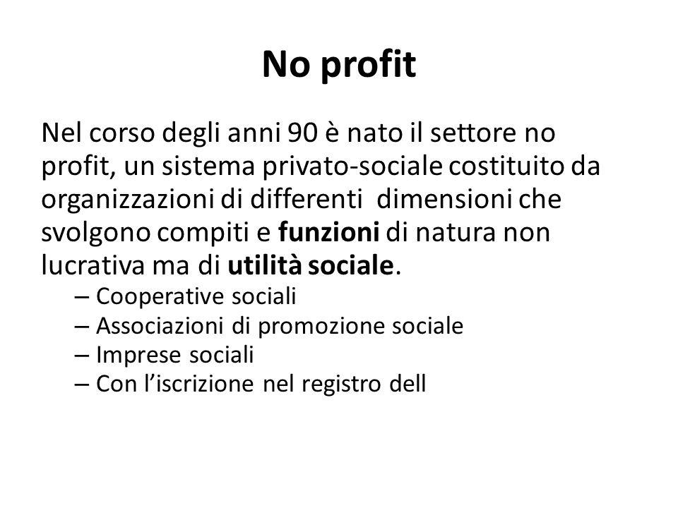 No profit Nel corso degli anni 90 è nato il settore no