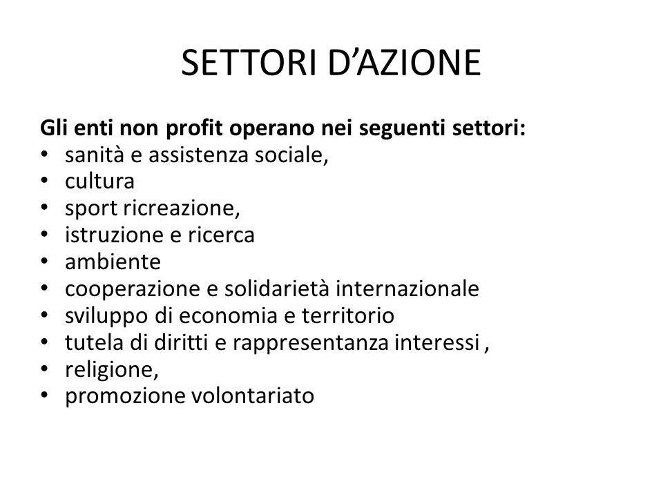 SETTORI D'AZIONE Gli enti non profit operano nei seguenti settori: