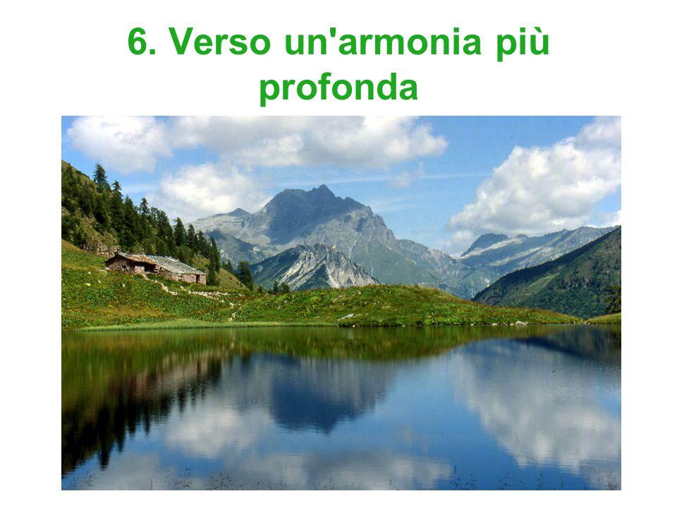 6. Verso un armonia più profonda
