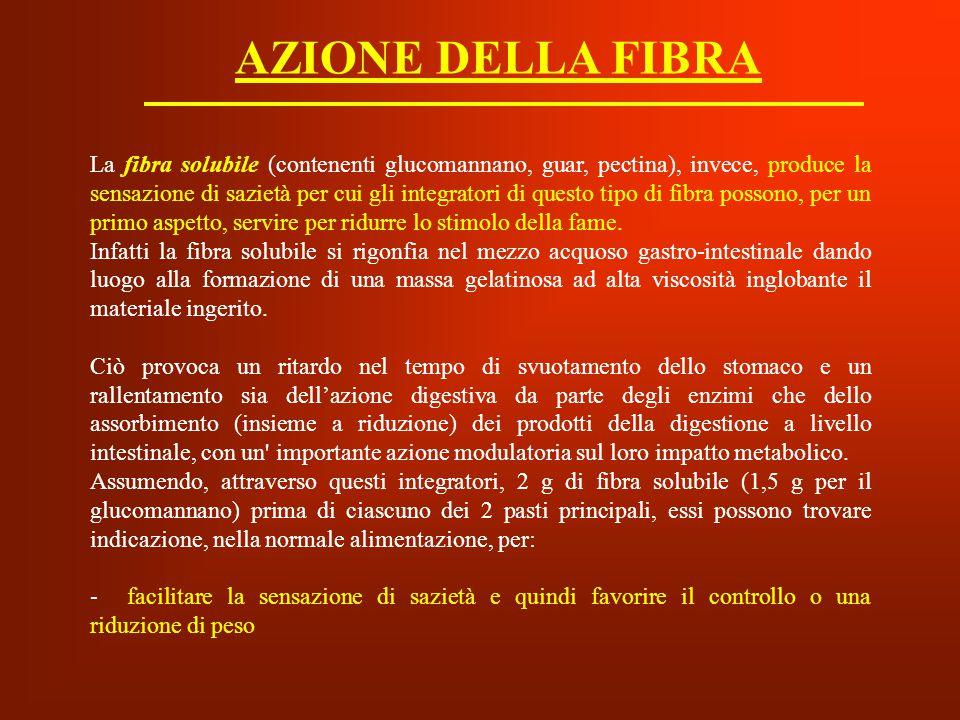 AZIONE DELLA FIBRA