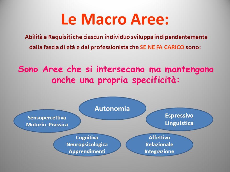 Le Macro Aree: Abilità e Requisiti che ciascun individuo sviluppa indipendentemente.