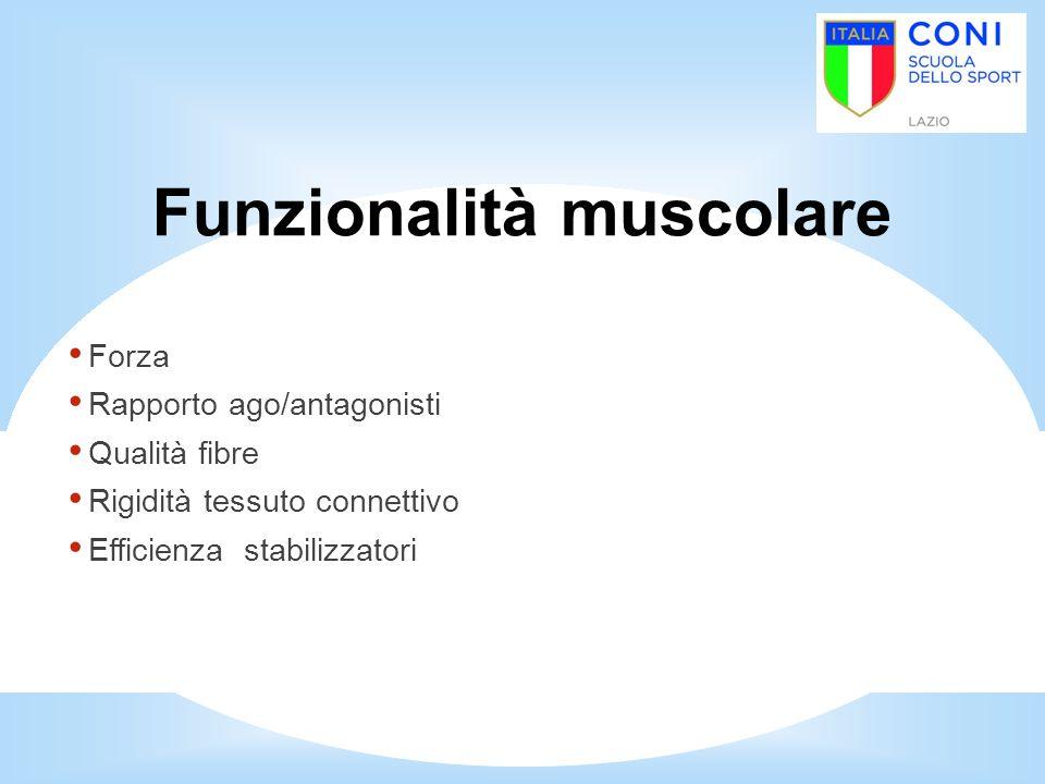 Funzionalità muscolare