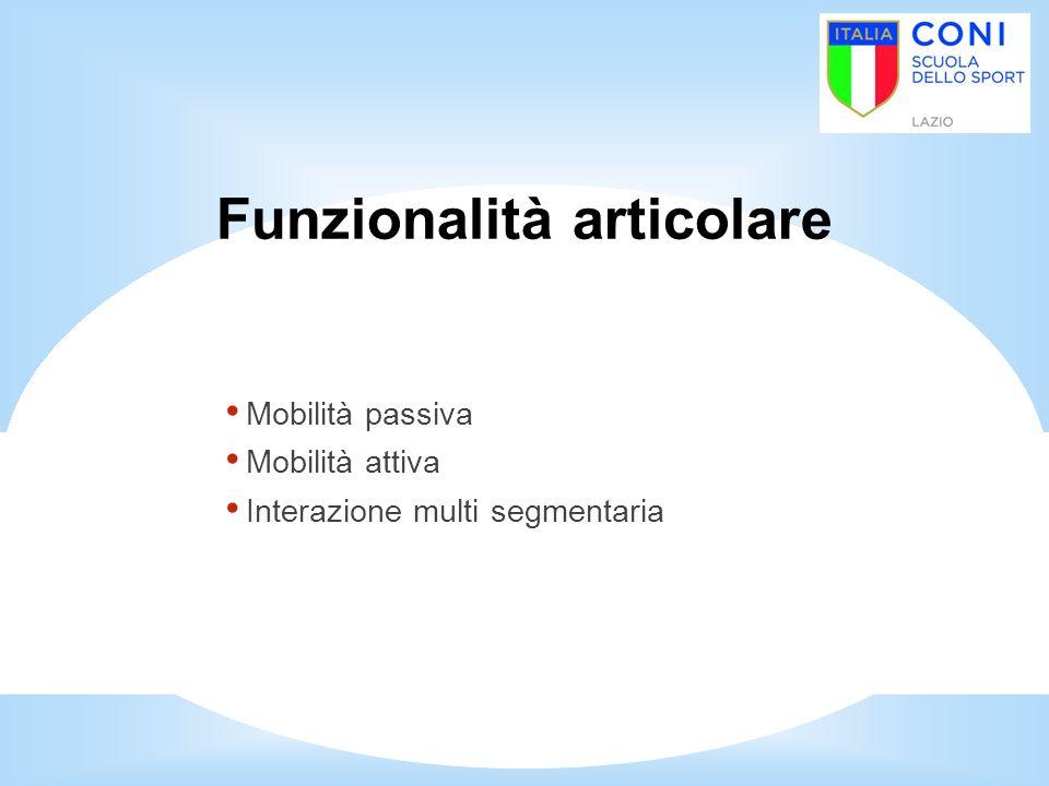 Funzionalità articolare