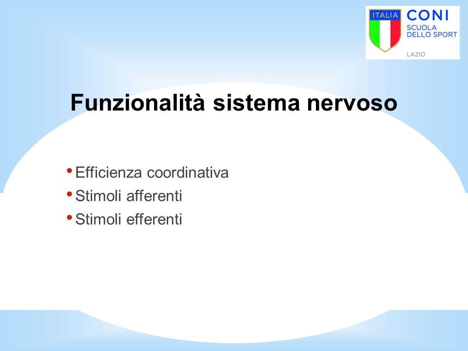 Funzionalità sistema nervoso