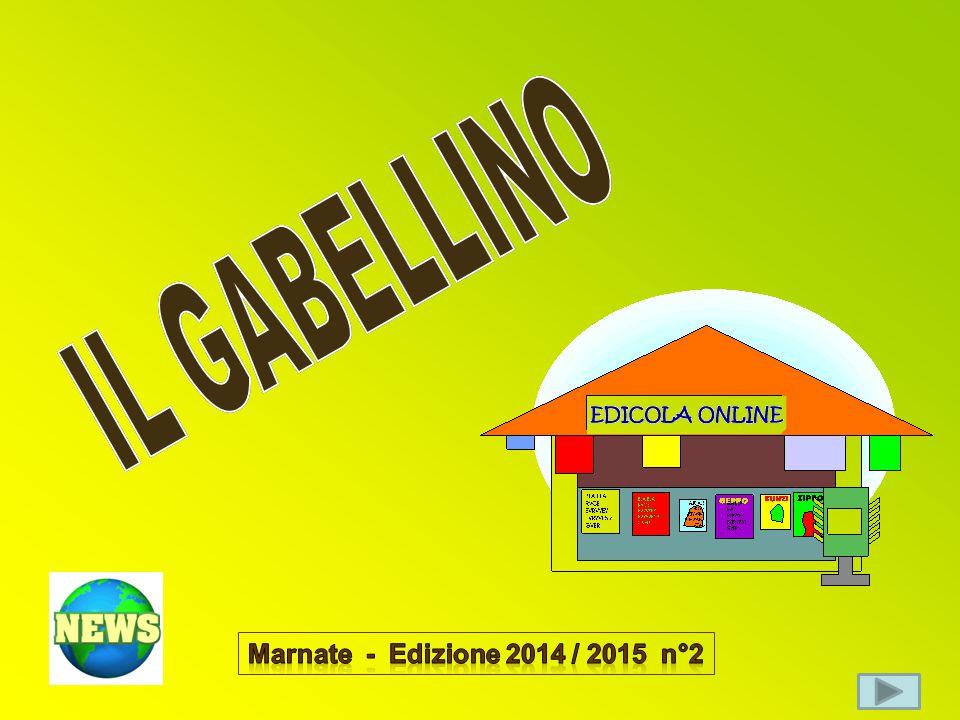 IL GABELLINO Marnate - Edizione 2014 / 2015 n°2