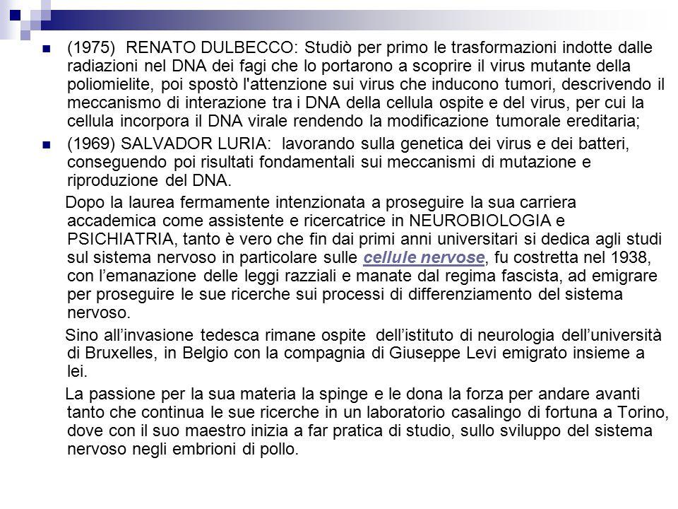 (1975) RENATO DULBECCO: Studiò per primo le trasformazioni indotte dalle radiazioni nel DNA dei fagi che lo portarono a scoprire il virus mutante della poliomielite, poi spostò l attenzione sui virus che inducono tumori, descrivendo il meccanismo di interazione tra i DNA della cellula ospite e del virus, per cui la cellula incorpora il DNA virale rendendo la modificazione tumorale ereditaria;