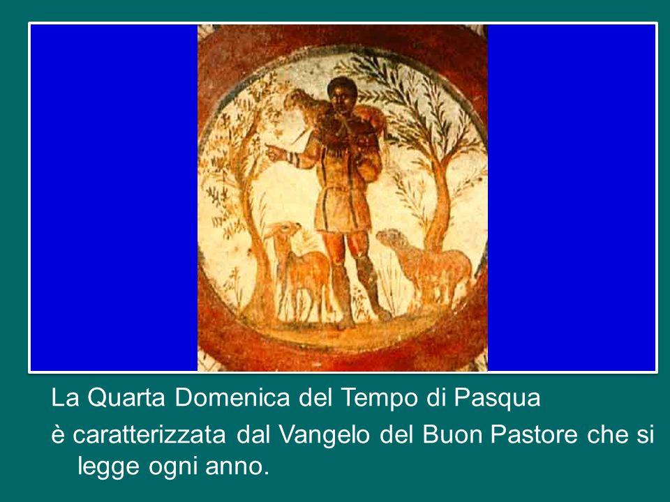 La Quarta Domenica del Tempo di Pasqua è caratterizzata dal Vangelo del Buon Pastore che si legge ogni anno.