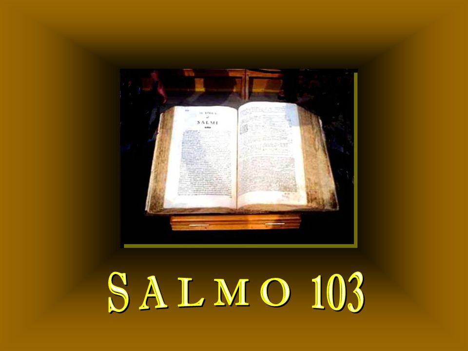 S A L M O 103