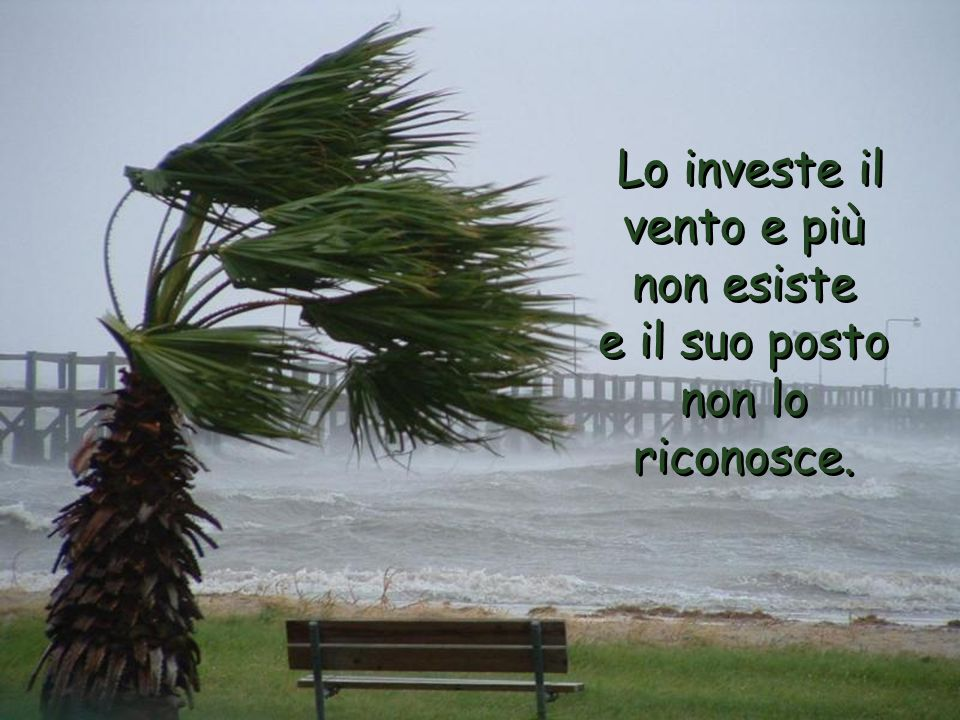 Lo investe il vento e più non esiste e il suo posto non lo riconosce.