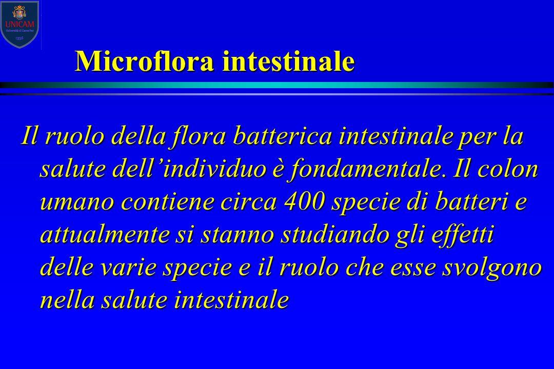 Microflora intestinale