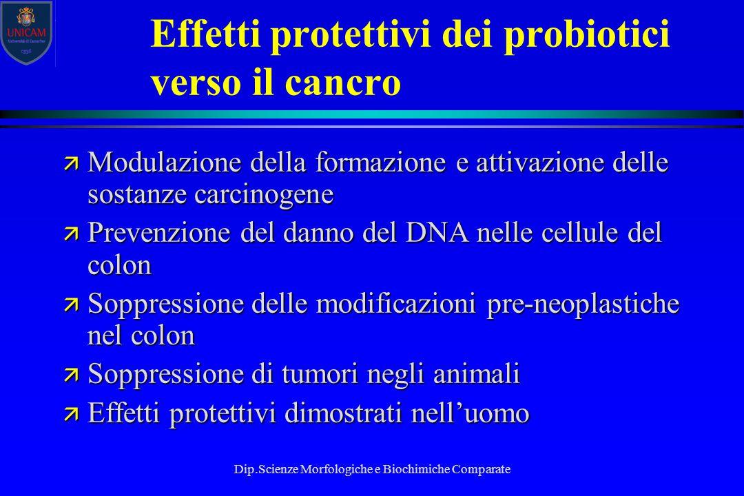 Effetti protettivi dei probiotici verso il cancro
