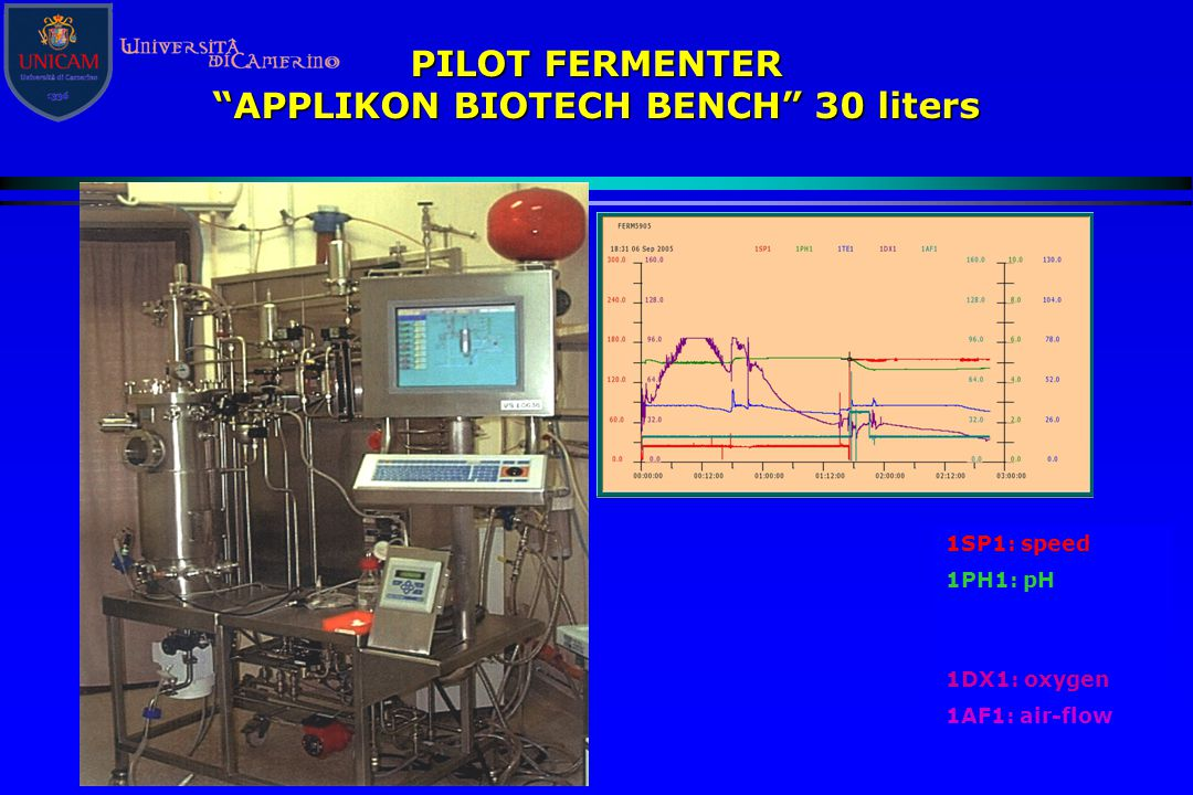 APPLIKON BIOTECH BENCH 30 liters