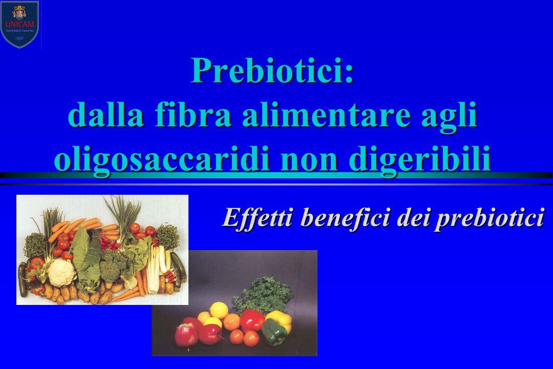 Prebiotici: dalla fibra alimentare agli oligosaccaridi non digeribili