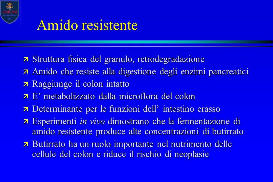 Amido resistente Struttura fisica del granulo, retrodegradazione