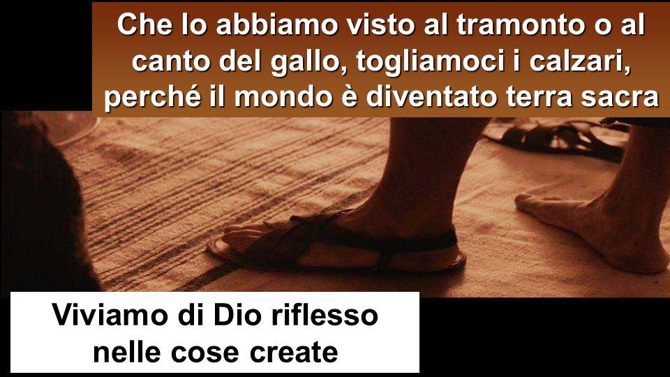 Viviamo di Dio riflesso nelle cose create