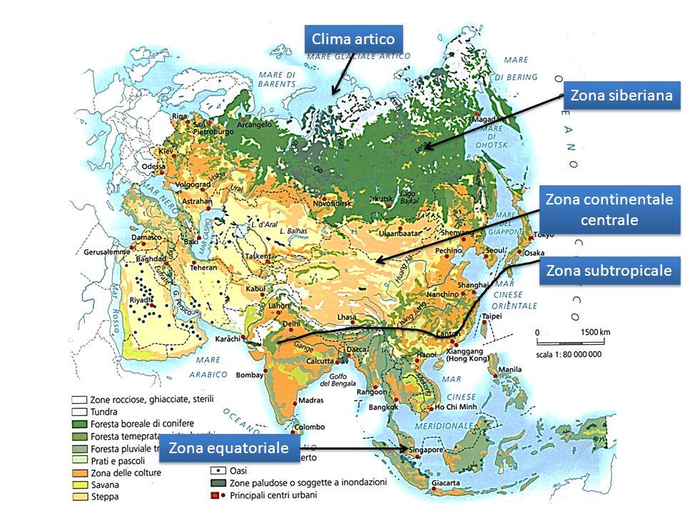 Clima artico Zona siberiana Zona continentale centrale Zona subtropicale Zona equatoriale