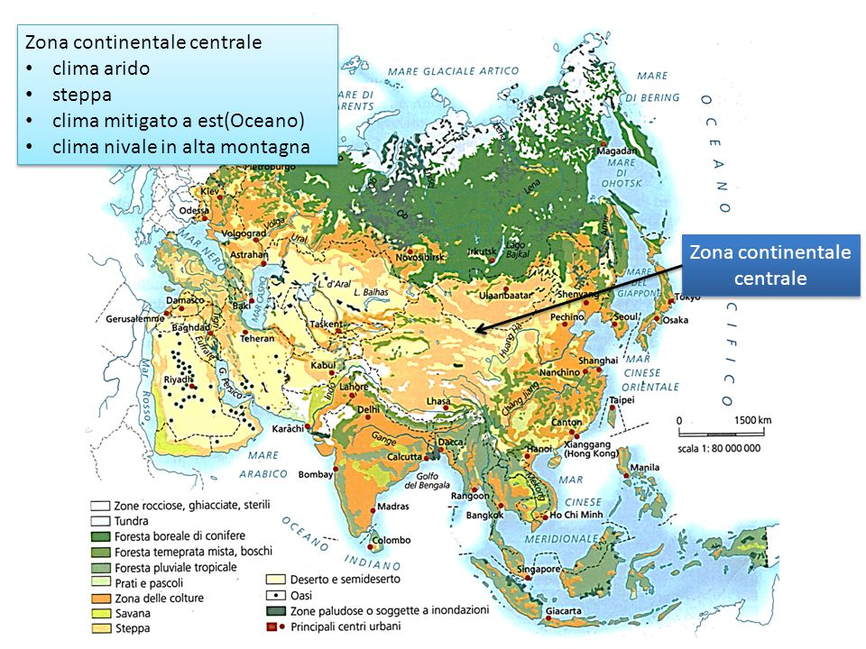 Zona continentale centrale