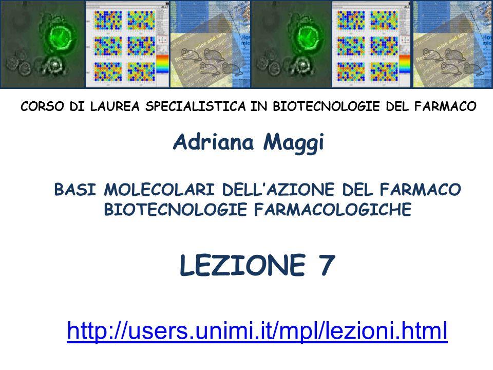LEZIONE 7 http://users.unimi.it/mpl/lezioni.html Adriana Maggi