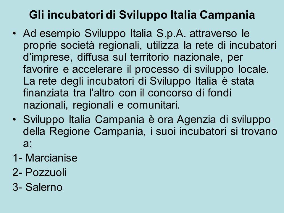 Gli incubatori di Sviluppo Italia Campania