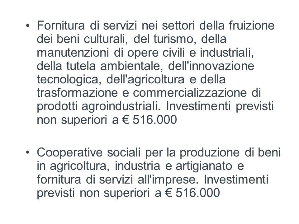 Fornitura di servizi nei settori della fruizione dei beni culturali, del turismo, della manutenzioni di opere civili e industriali, della tutela ambientale, dell innovazione tecnologica, dell agricoltura e della trasformazione e commercializzazione di prodotti agroindustriali. Investimenti previsti non superiori a € 516.000