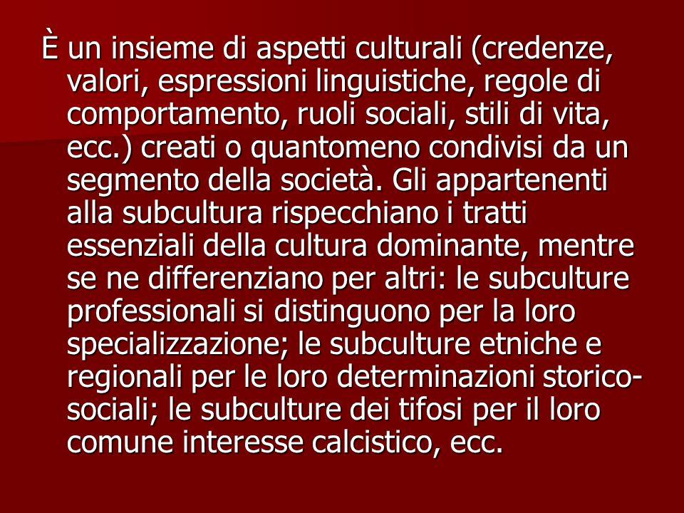 È un insieme di aspetti culturali (credenze, valori, espressioni linguistiche, regole di comportamento, ruoli sociali, stili di vita, ecc.) creati o quantomeno condivisi da un segmento della società.