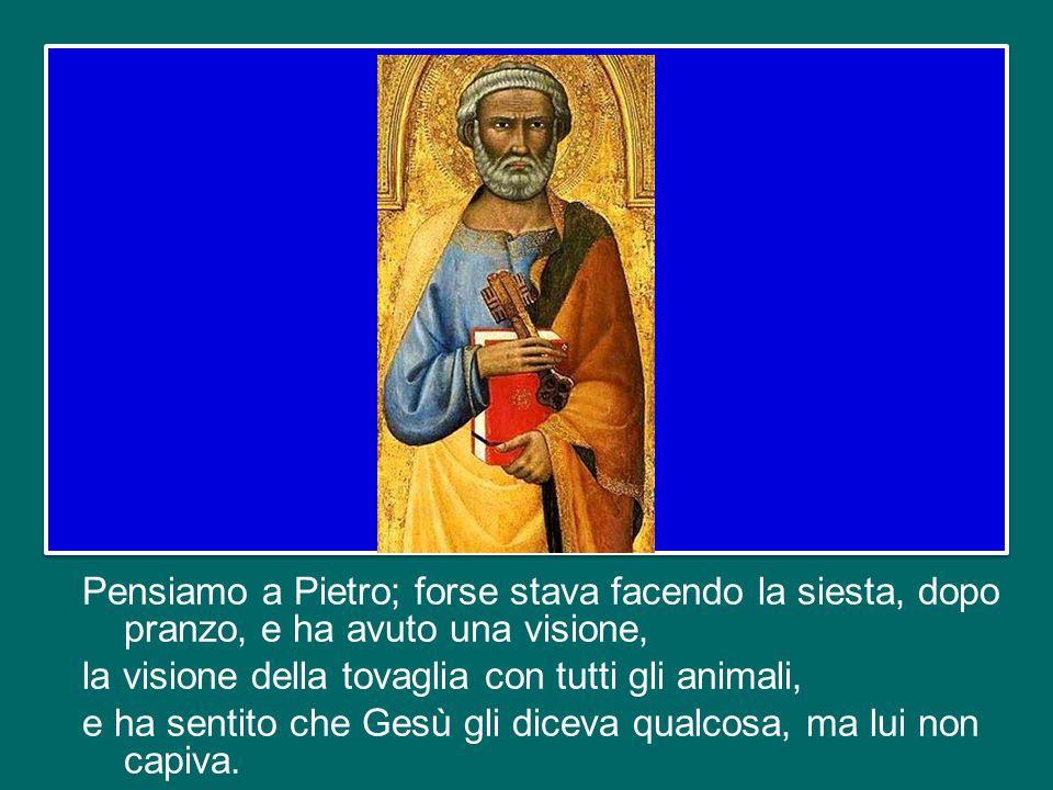 Pensiamo a Pietro; forse stava facendo la siesta, dopo pranzo, e ha avuto una visione, la visione della tovaglia con tutti gli animali, e ha sentito che Gesù gli diceva qualcosa, ma lui non capiva.