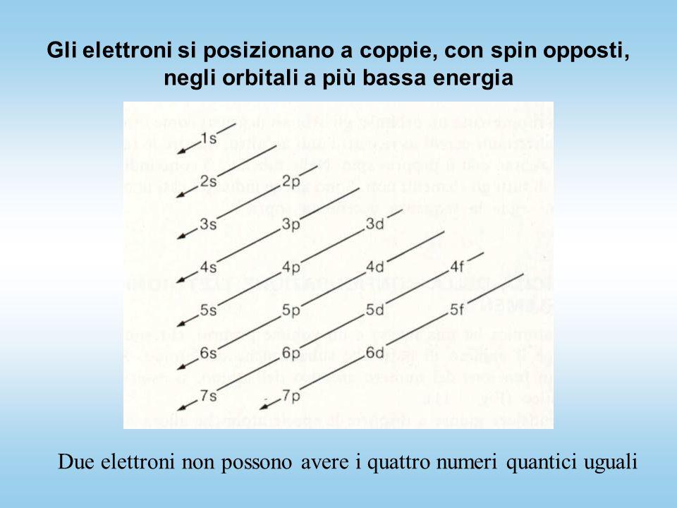 Gli elettroni si posizionano a coppie, con spin opposti, negli orbitali a più bassa energia