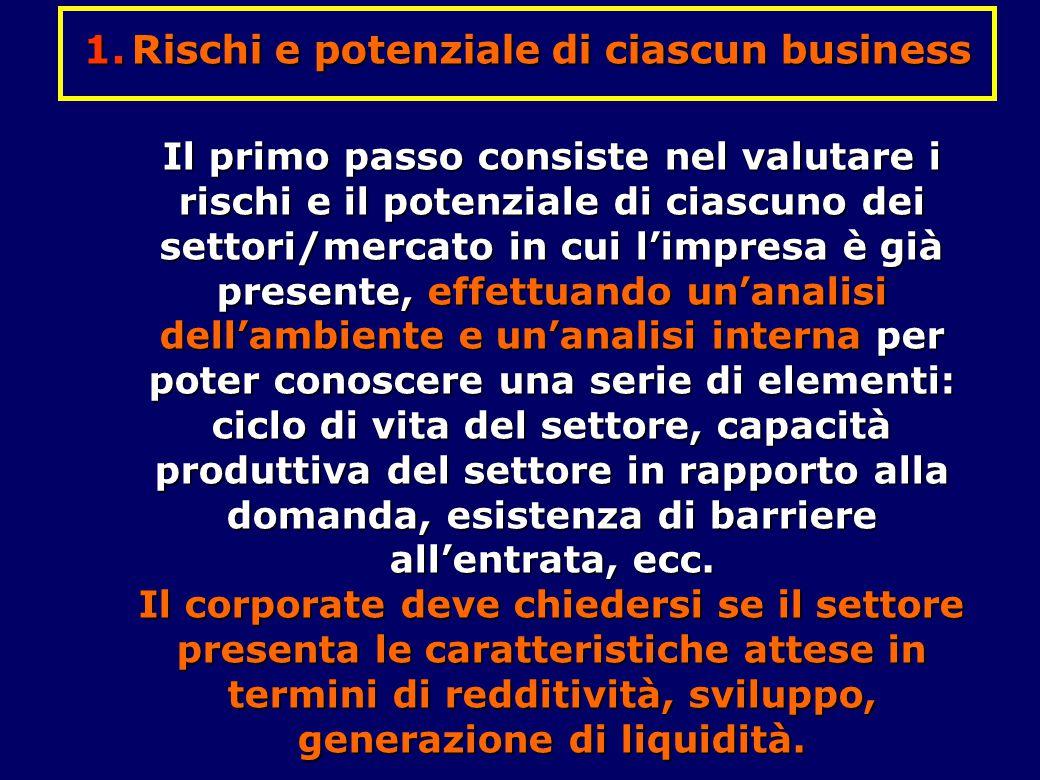 Rischi e potenziale di ciascun business
