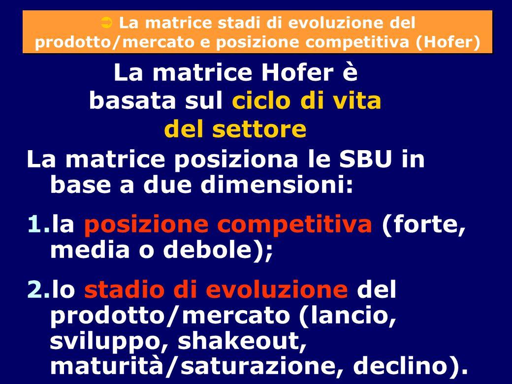 La matrice Hofer è basata sul ciclo di vita del settore