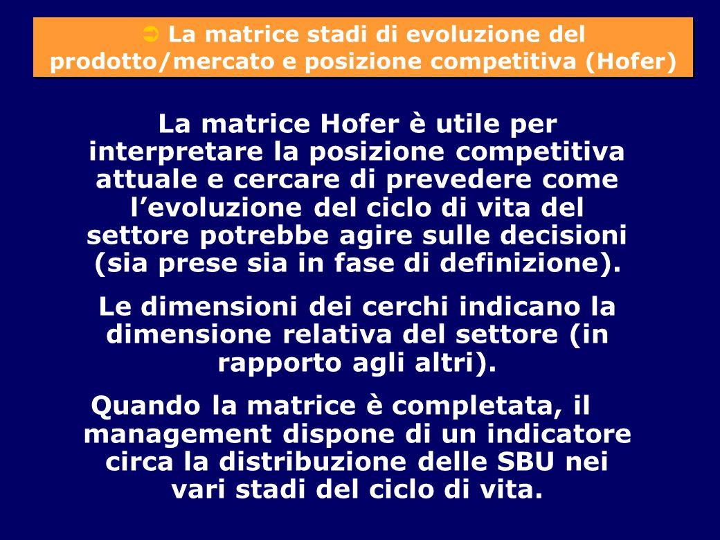  La matrice stadi di evoluzione del prodotto/mercato e posizione competitiva (Hofer)