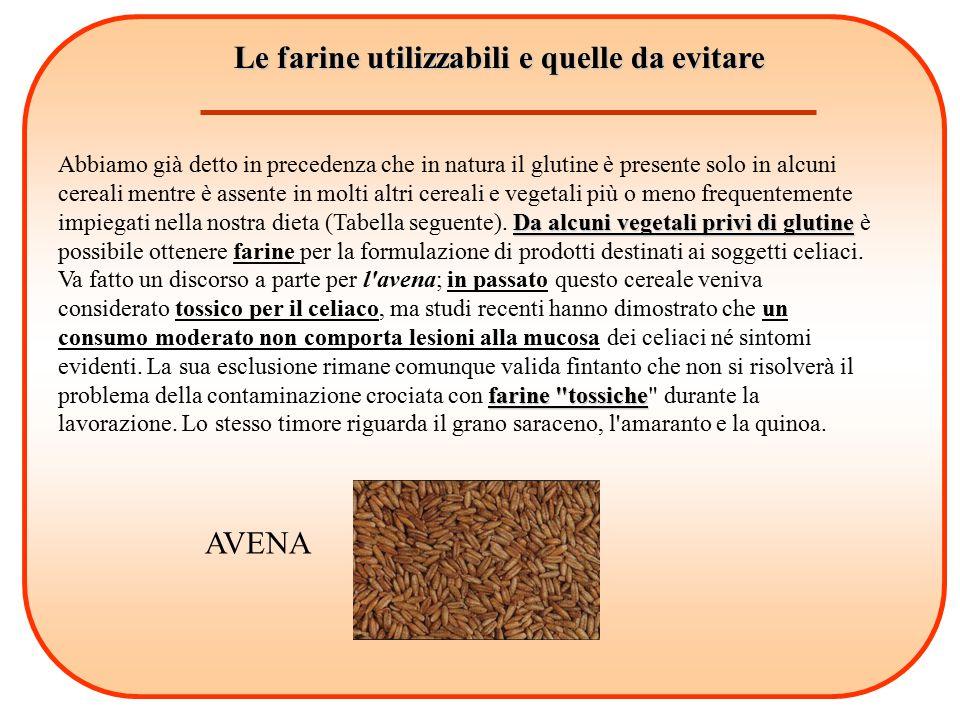 Le farine utilizzabili e quelle da evitare