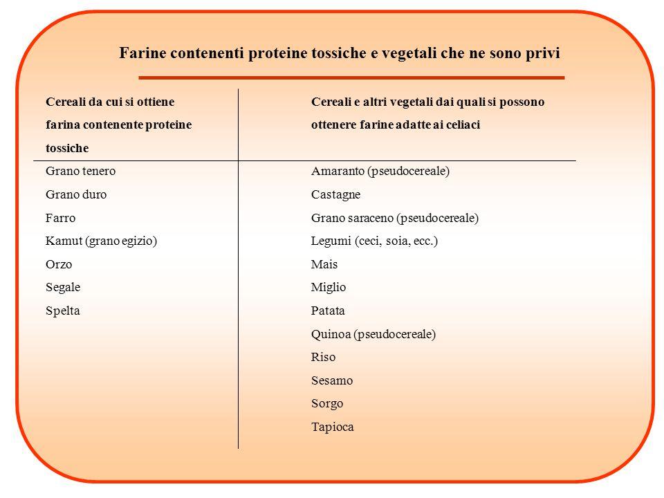 Farine contenenti proteine tossiche e vegetali che ne sono privi
