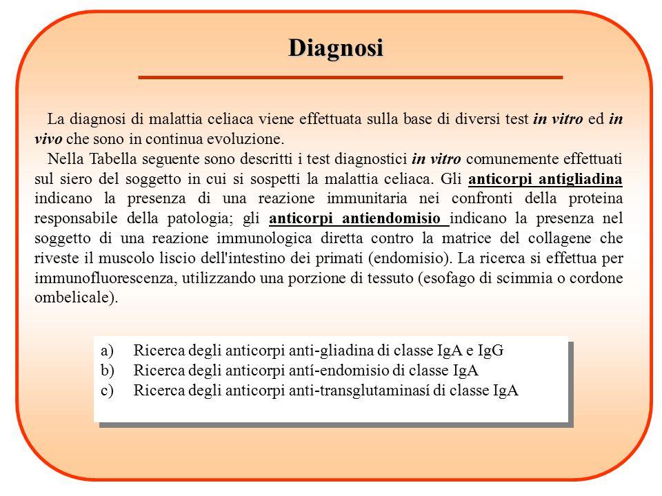 Diagnosi La diagnosi di malattia celiaca viene effettuata sulla base di diversi test in vitro ed in vivo che sono in continua evoluzione.