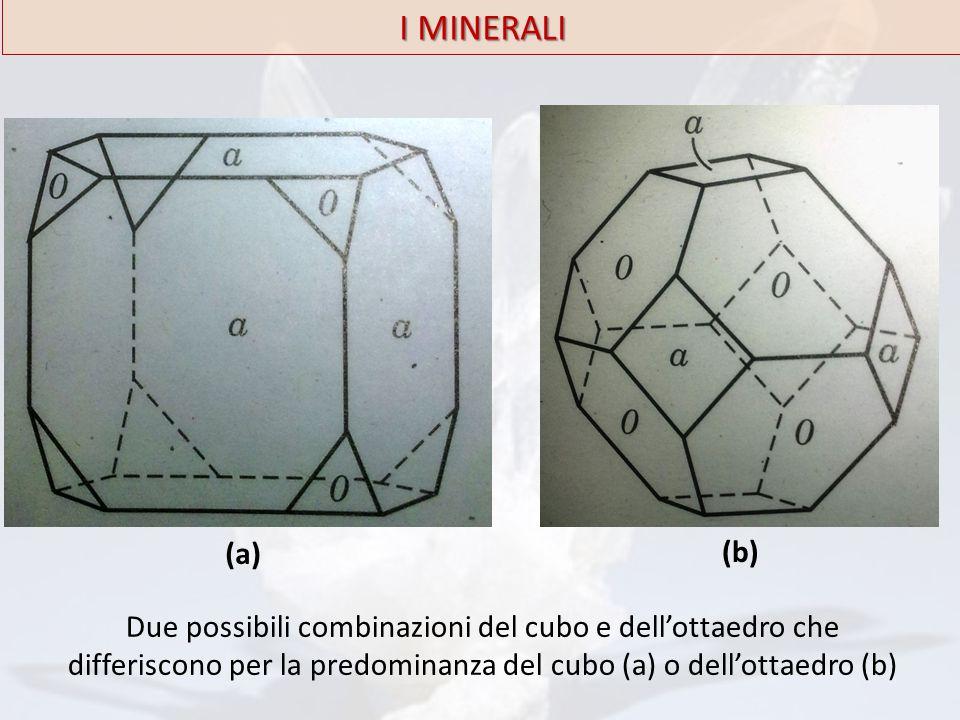 I MINERALI (a) (b) Due possibili combinazioni del cubo e dell'ottaedro che differiscono per la predominanza del cubo (a) o dell'ottaedro (b)