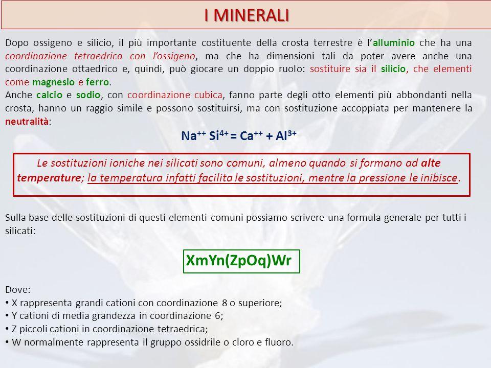 I MINERALI XmYn(ZpOq)Wr Na++ Si4+ = Ca++ + Al3+