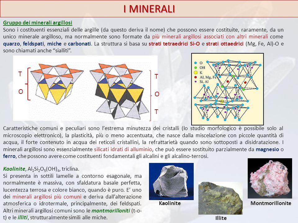 I MINERALI T O Gruppo dei minerali argillosi