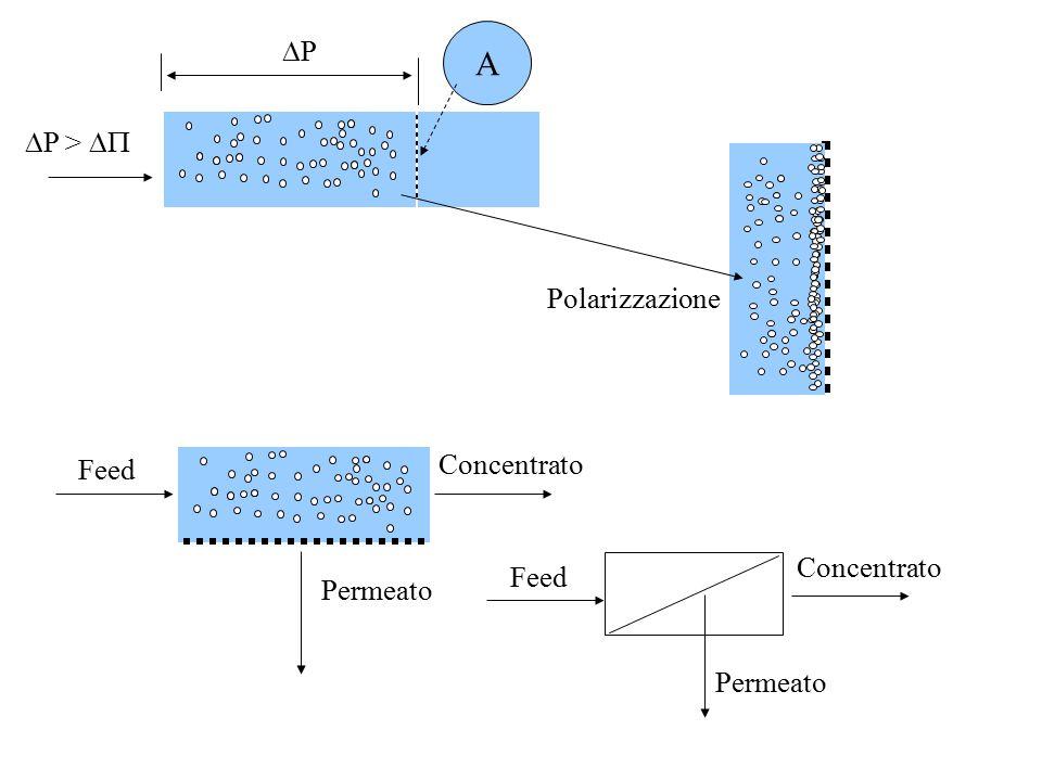 A P P >  Polarizzazione Concentrato Feed Concentrato Feed