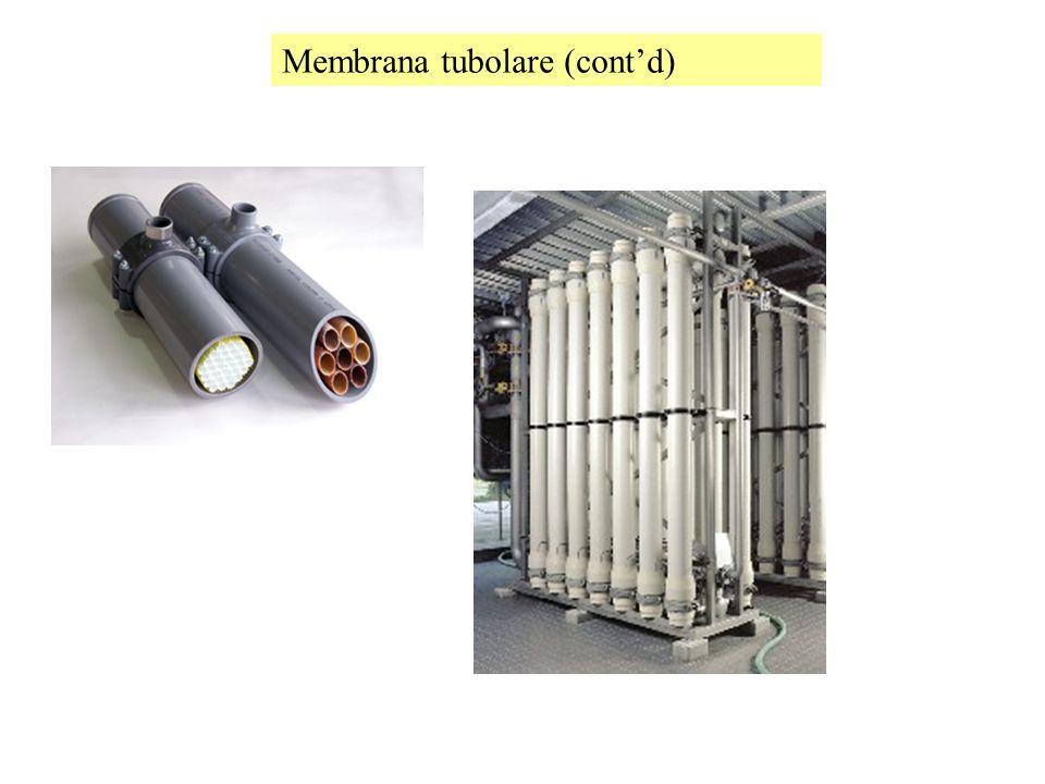 Membrana tubolare (cont'd)