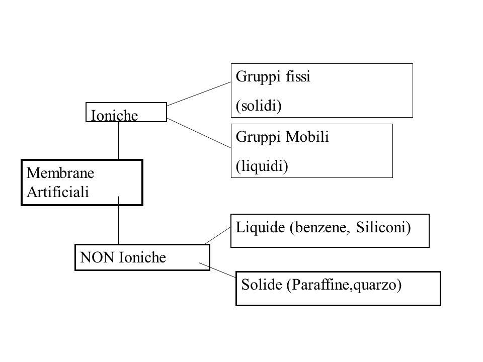 Gruppi fissi (solidi) Ioniche. Gruppi Mobili. (liquidi) Membrane Artificiali. Liquide (benzene, Siliconi)