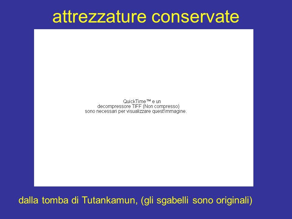 attrezzature conservate