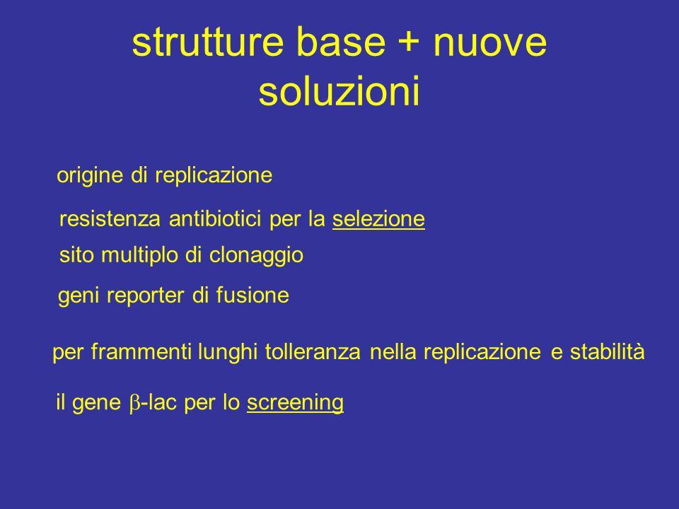 strutture base + nuove soluzioni