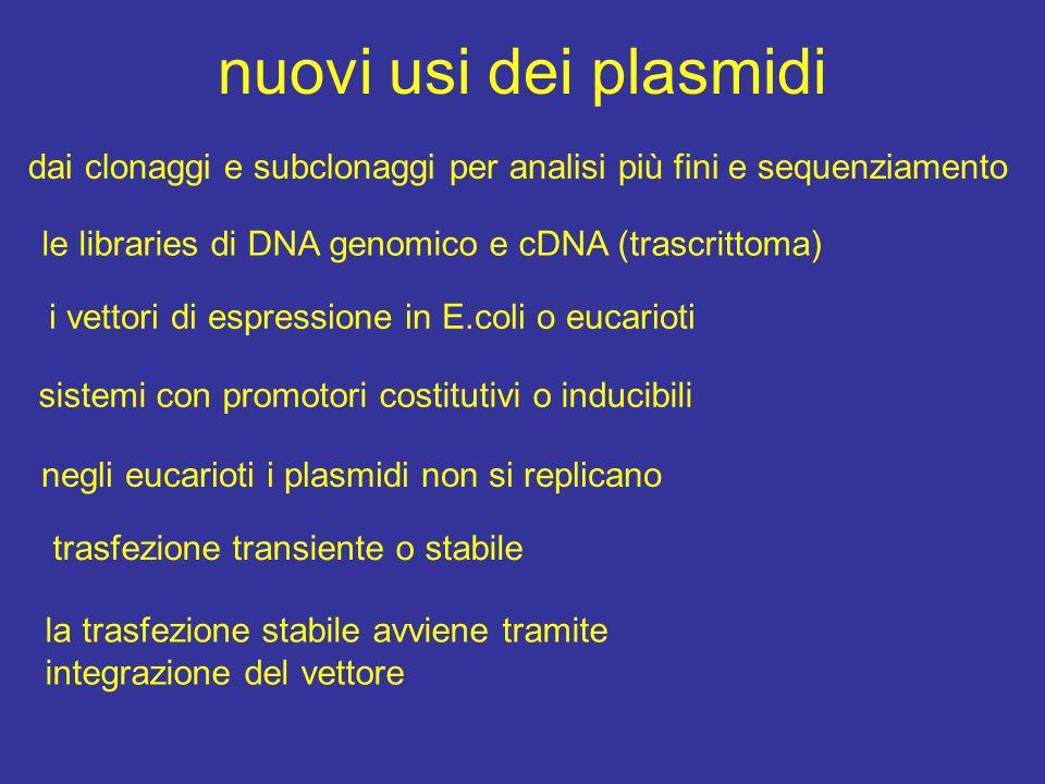 nuovi usi dei plasmidi dai clonaggi e subclonaggi per analisi più fini e sequenziamento. le libraries di DNA genomico e cDNA (trascrittoma)