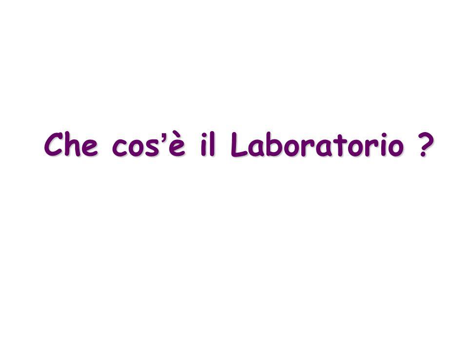 Che cos'è il Laboratorio